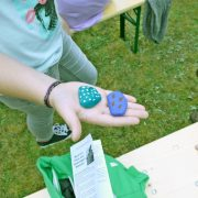 2016 GemFestScouts 01